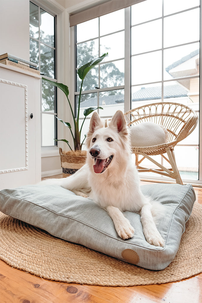 Sage Woven Dog Bed