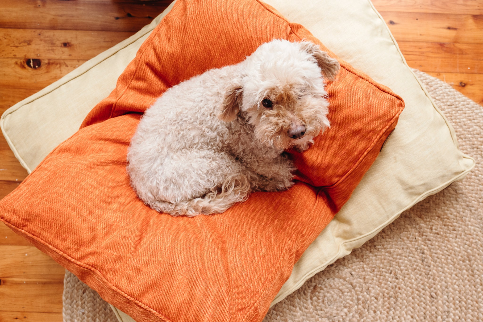 Terracotta Woven Dog Bed