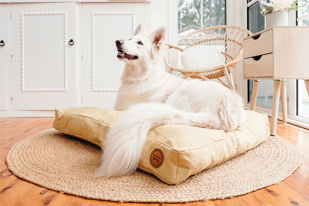 Turmeric Woven Dog Bed (Cover Only)