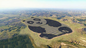China just built a Panda Power Plant