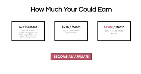 What you can earn as a Subtl Beauty Affiliate