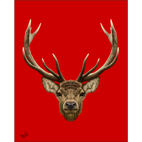 Stag Poster Red