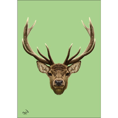 Stag Poster Mint