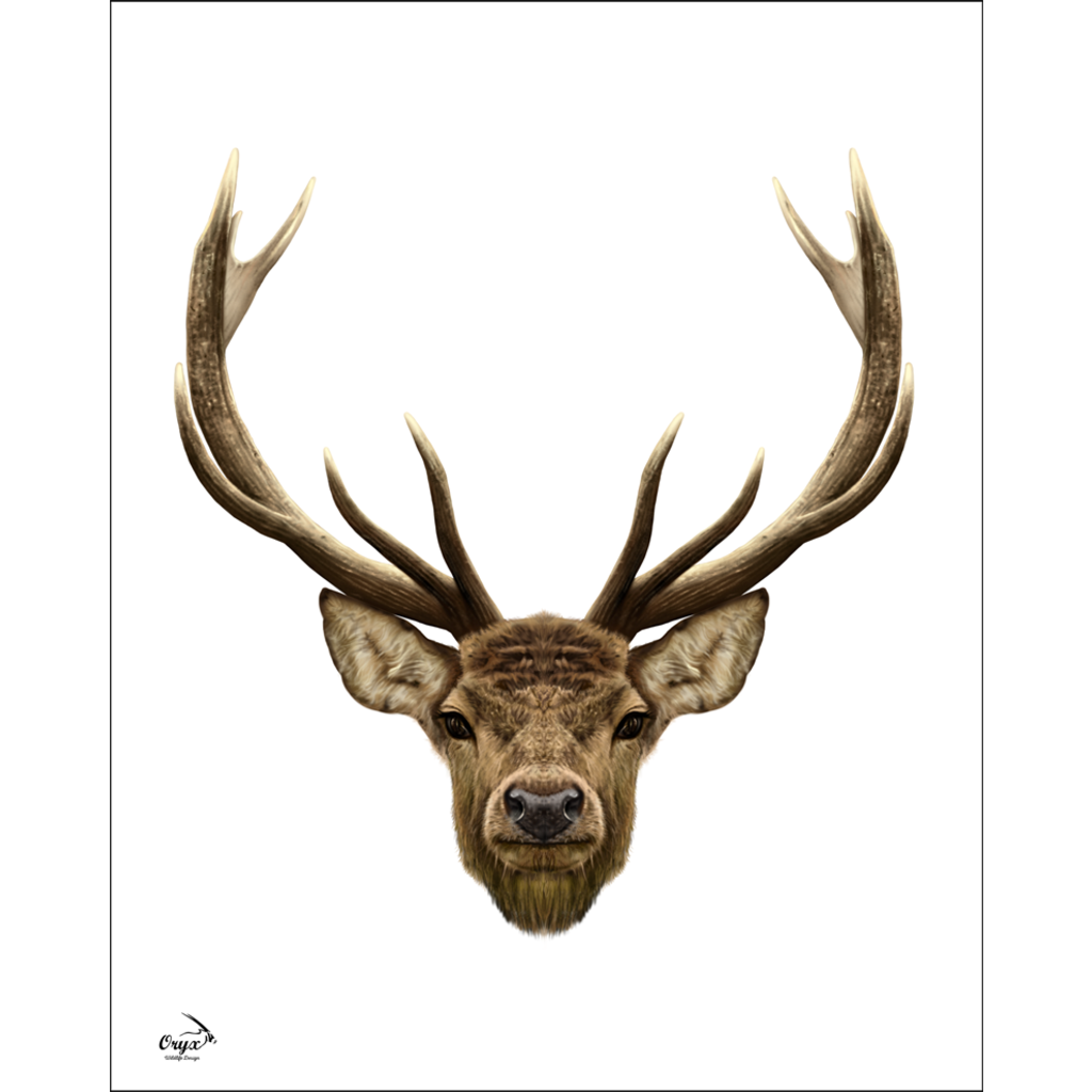 Stag Poster White