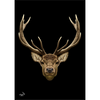 Stag Poster Black
