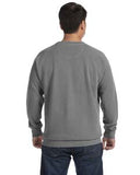 Comfort Colors Adult Crewneck Sweatshirt - Grey