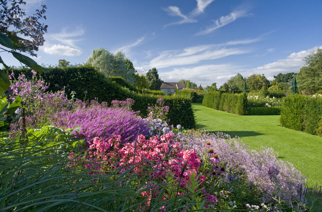 Event: RHS Garden Hyde Hall Flower Show, Essex