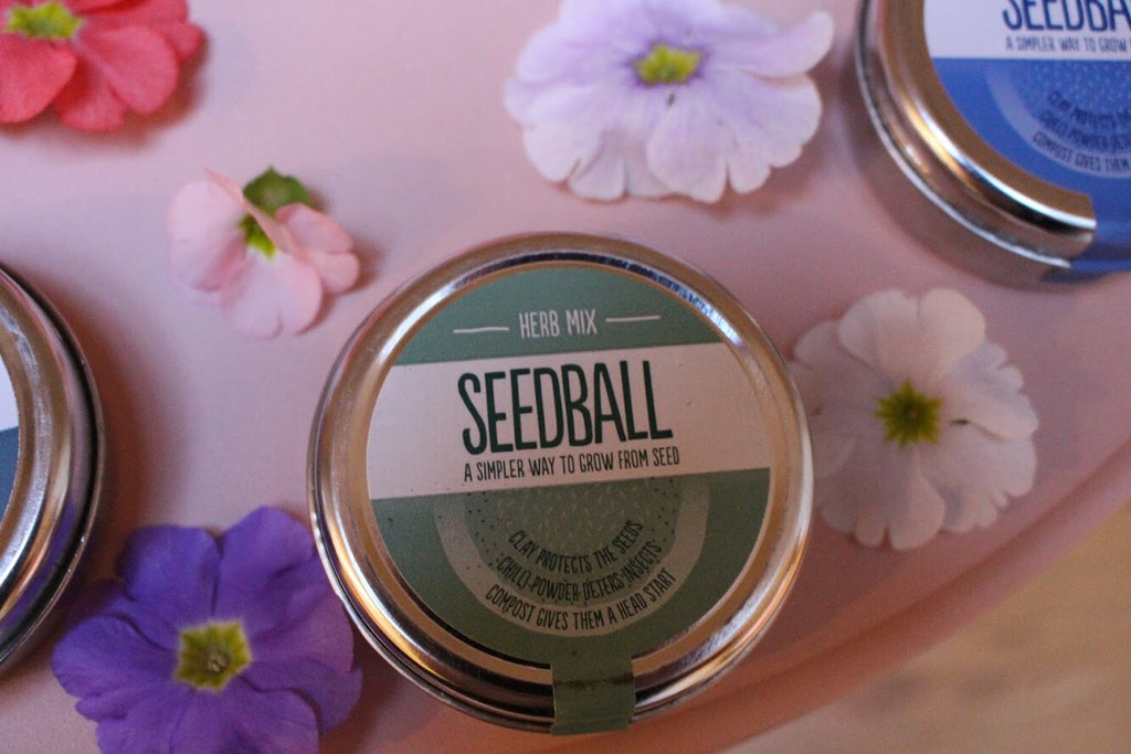 Herb Seed Mix by Seedball