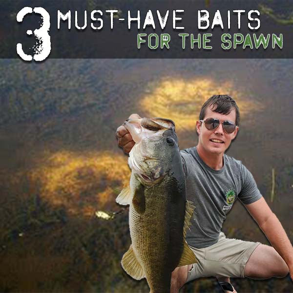 Three Must-Have Baits for the Spawn