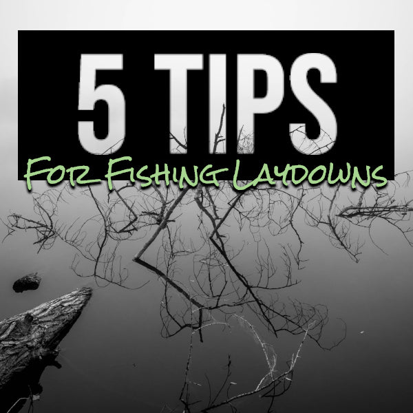 5 Tips for Fishing Laydowns