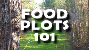 Food Plot Planting Tips & Tricks