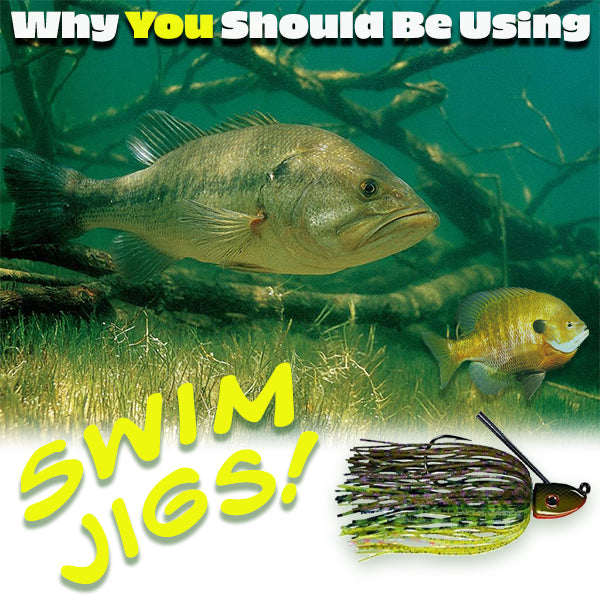 Why You Should Be Using Swim Jigs