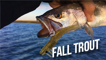 Fall Trout Fishing Tips
