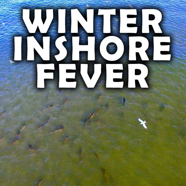 Late Winter Inshore Tips!