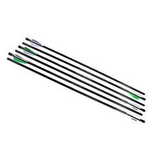 "Benjamin Airbow Arrows - 6-Pack 26"" 375 Grain Carbon"