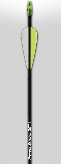 Carbon Express Youth Arrows 24
