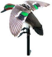 Lucky Duck Rapid Flyer Teal Remingtonote Ready