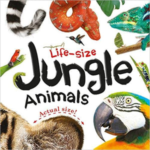 Life Size Jungle animals
