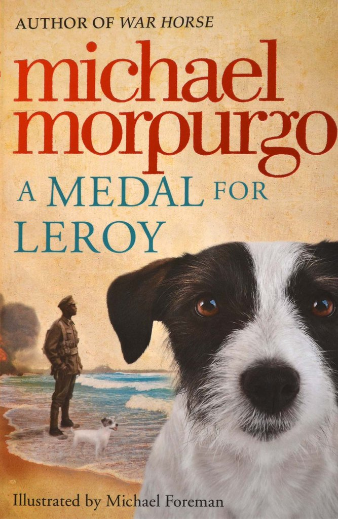A Medal for Leroy- Michael Morpurgo Titles | Ireland