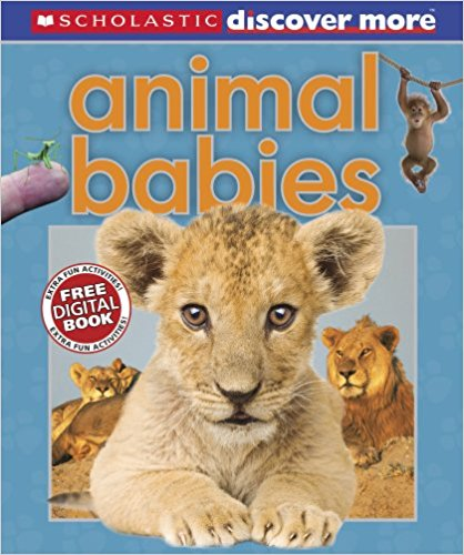 Animal Babies -Bargain Informative Books | Bags of Books | Ireland