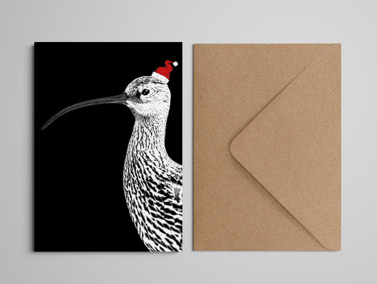 Christmas Card - Curlew