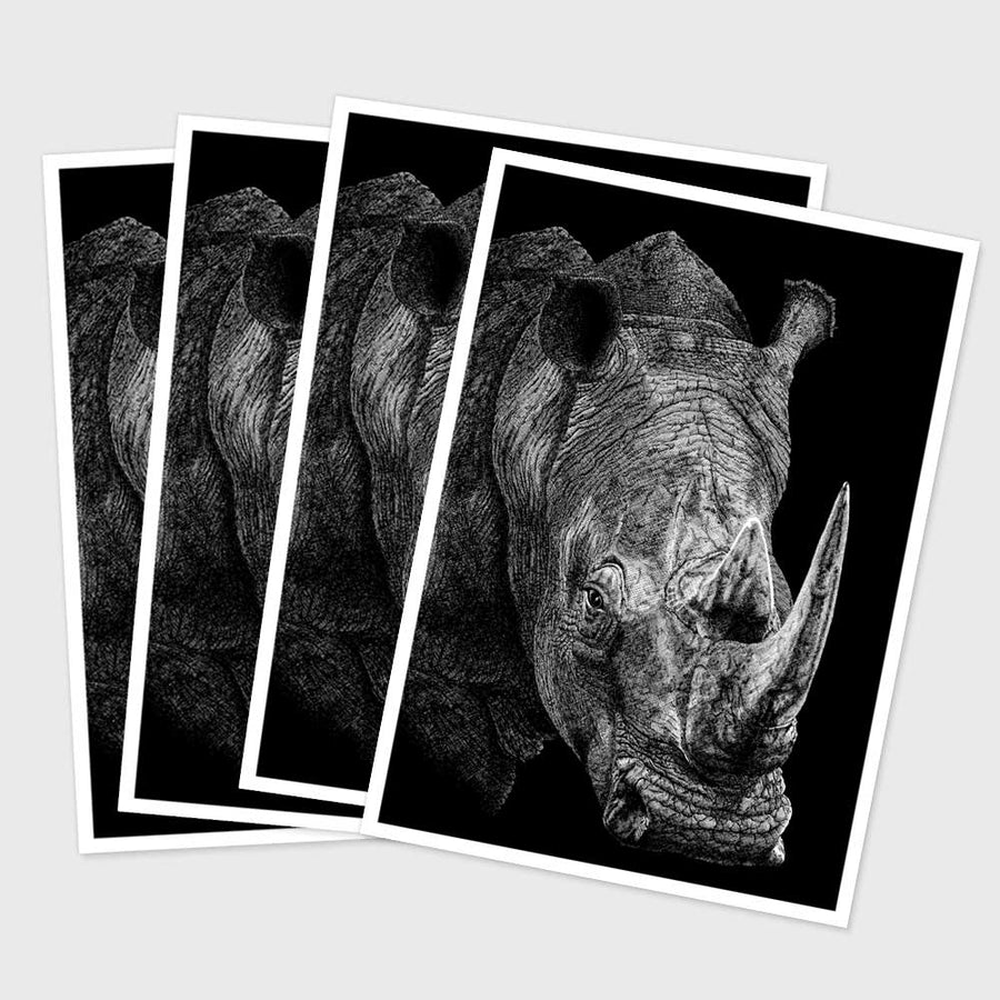 Postcard - Rhino (Pack of 4)