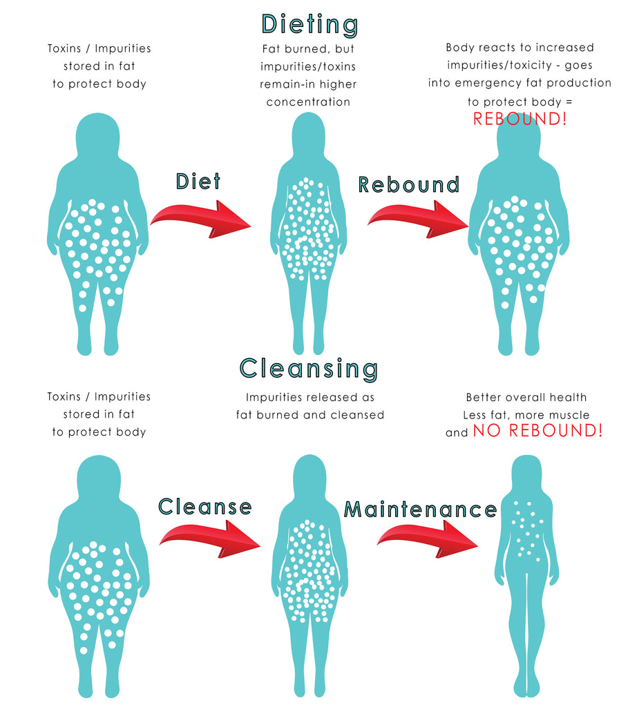Why Dieting is a Problem!