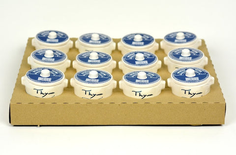 Aux Anysetiers du Roy Thyme Herbs in Crock 1oz Case of 12 Units - Wholesale