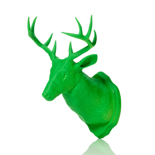 Urban Taxidermy - Magnet & Wall Hook - Green