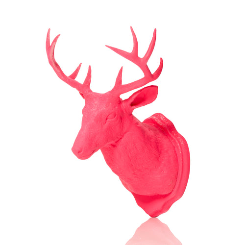Urban Taxidermy - Magnet & Wall Hook - Pink