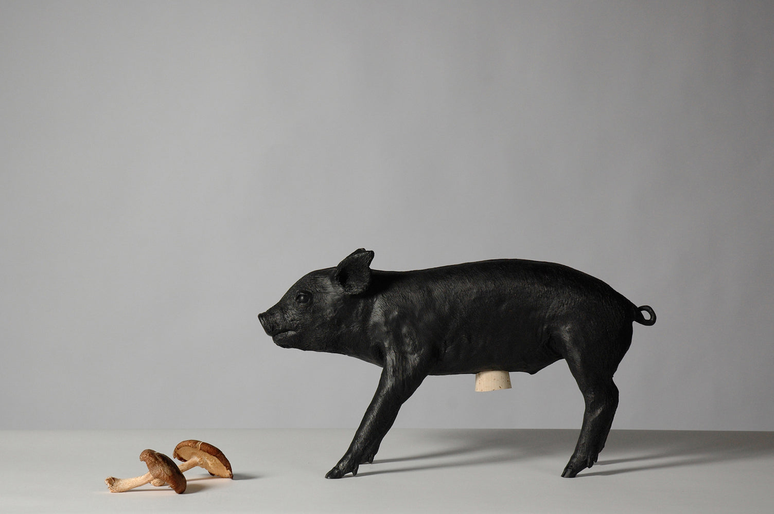 Reality Bank in the form of a Pig - Matte Black