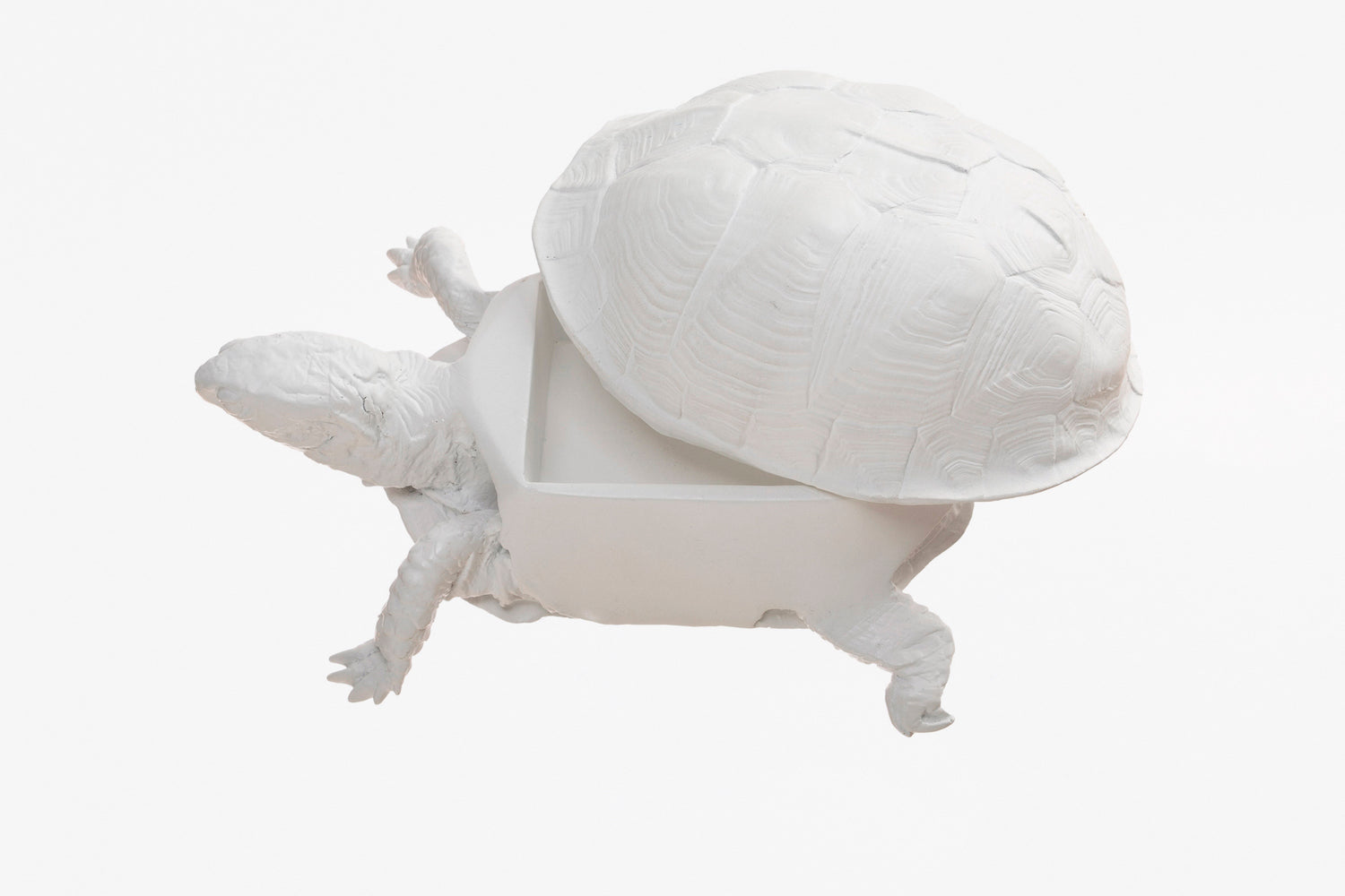 Turtle Box - White
