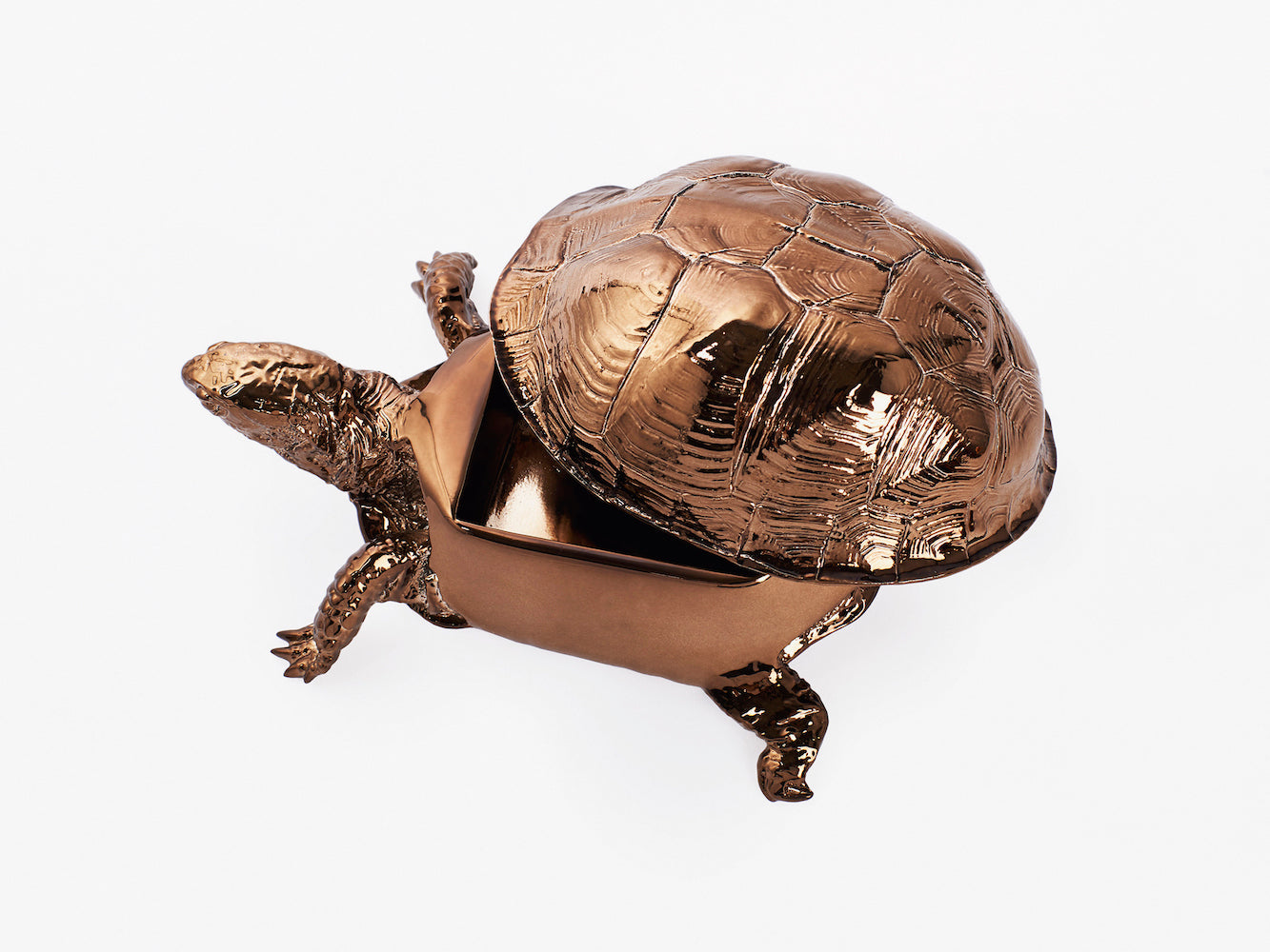 Turtle Box - Bronze