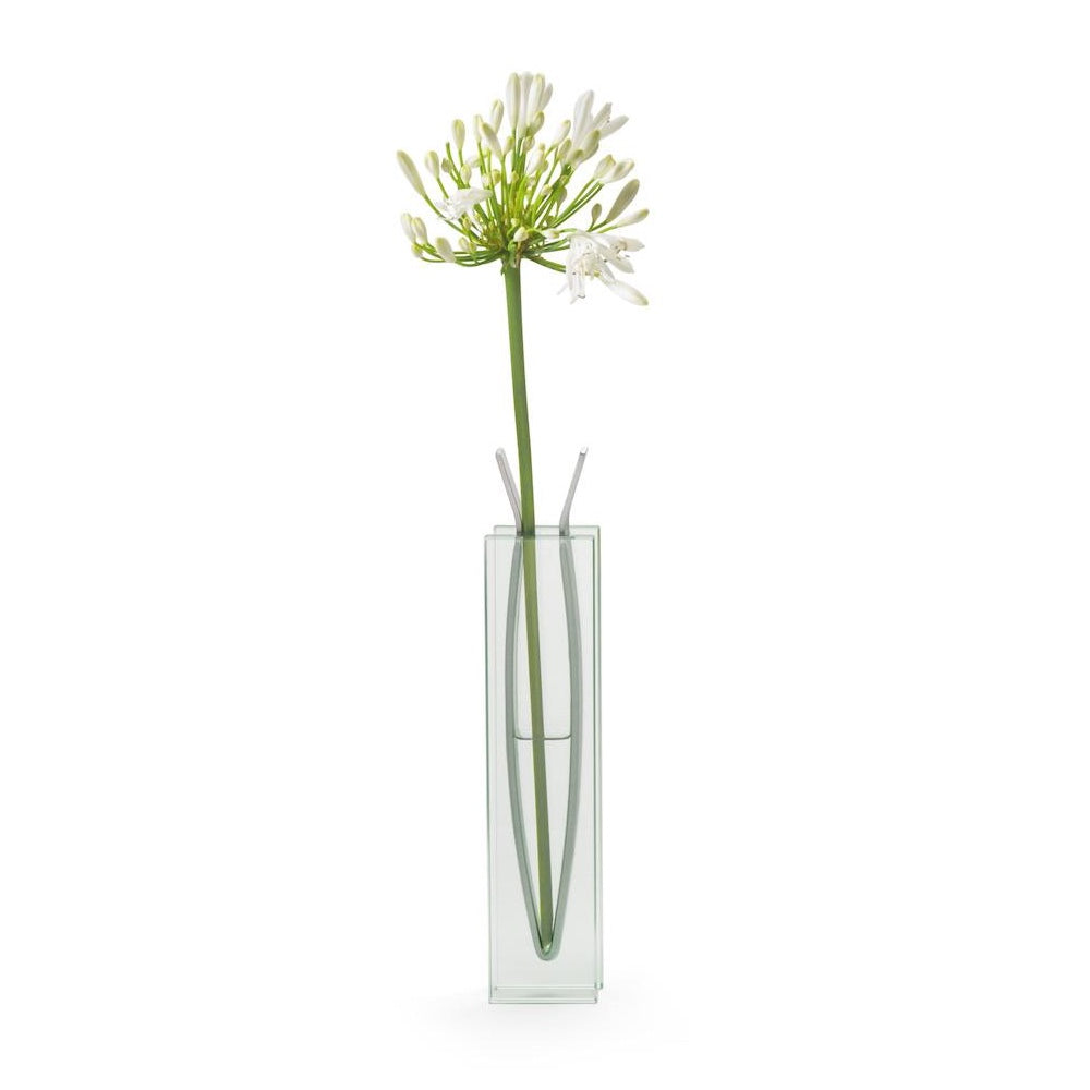 Vase Ribbon - Tall