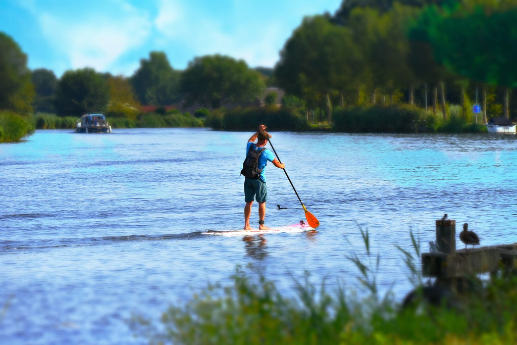 Top Tips for New Paddleboarders