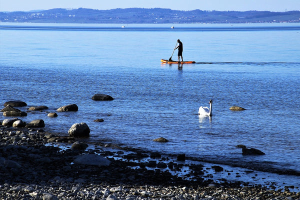 SUP paddleboarding along the coast