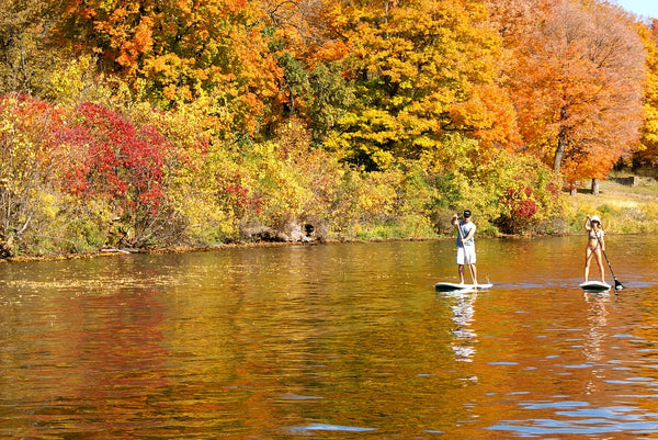 Two people paddleboarding along a river during autumn