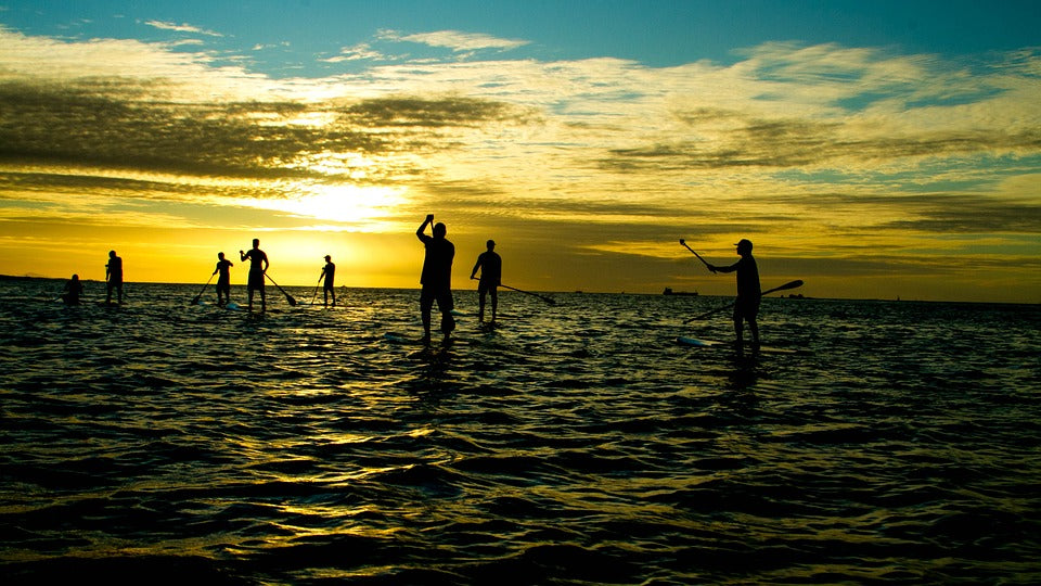 Group of SUP boarders at sunset