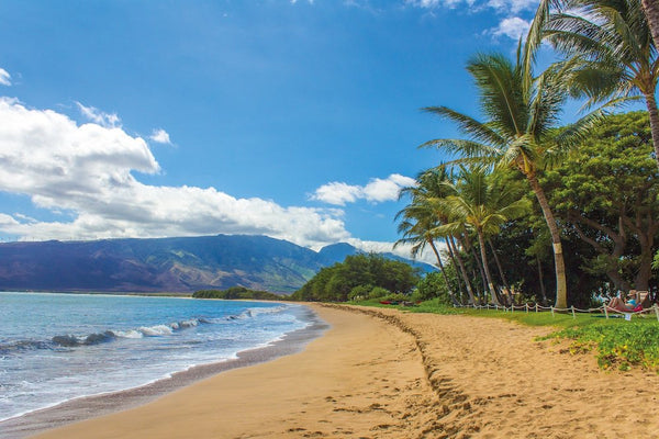 Beach in Hawaii.