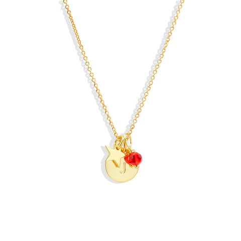 Initial Coin Necklace with Birthstone & Wishing Charm - IT STYLE BOX