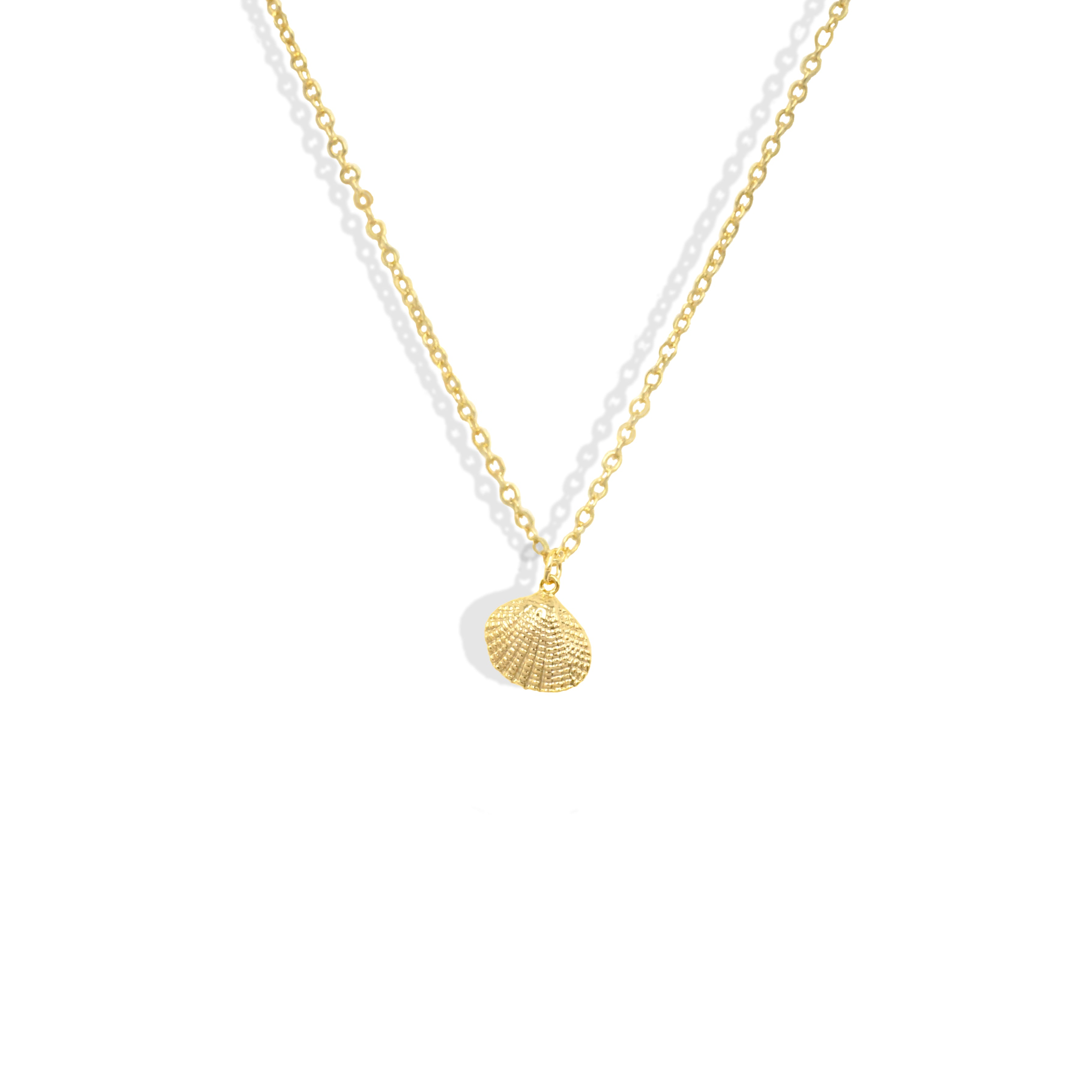 Gold Scallop Shell Dainty Necklace - IT STYLE BOX