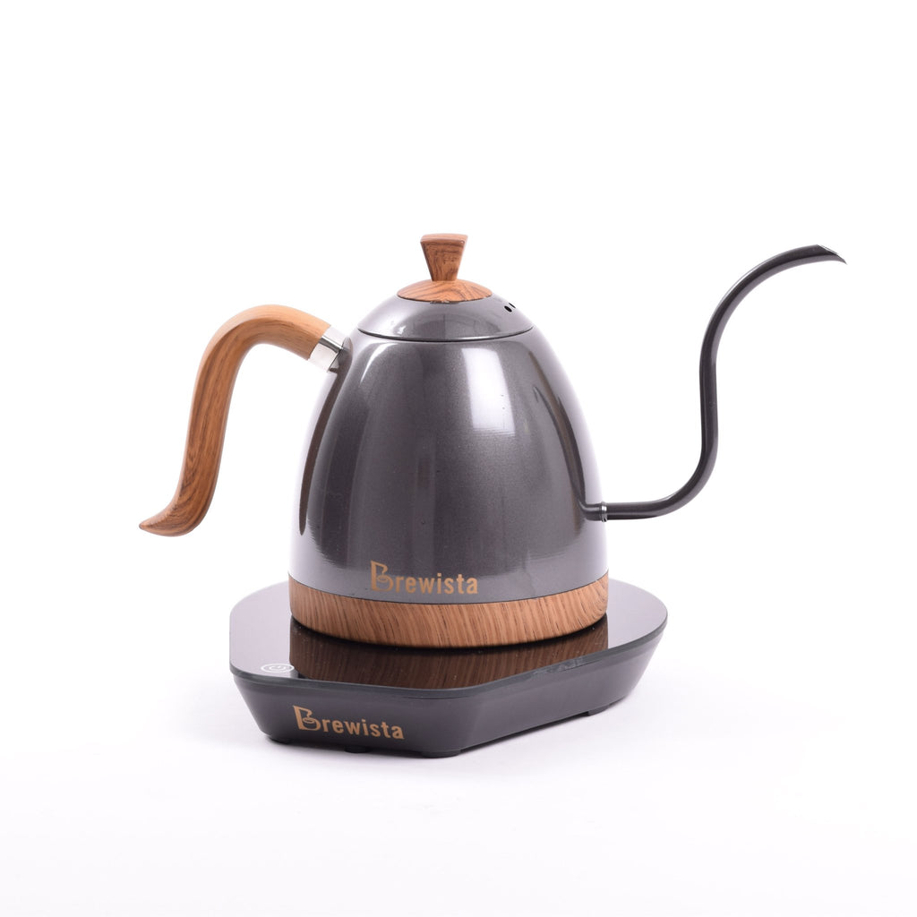 Brewista Artisan 600mL Gooseneck Variable Temperature Kettle - Gunmetal Gray