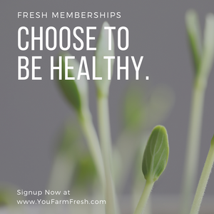 Monthly Fresh Memberships