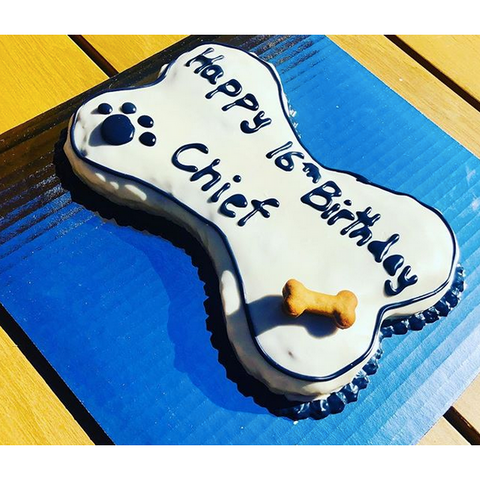 The Classic Bone | Dog Cake