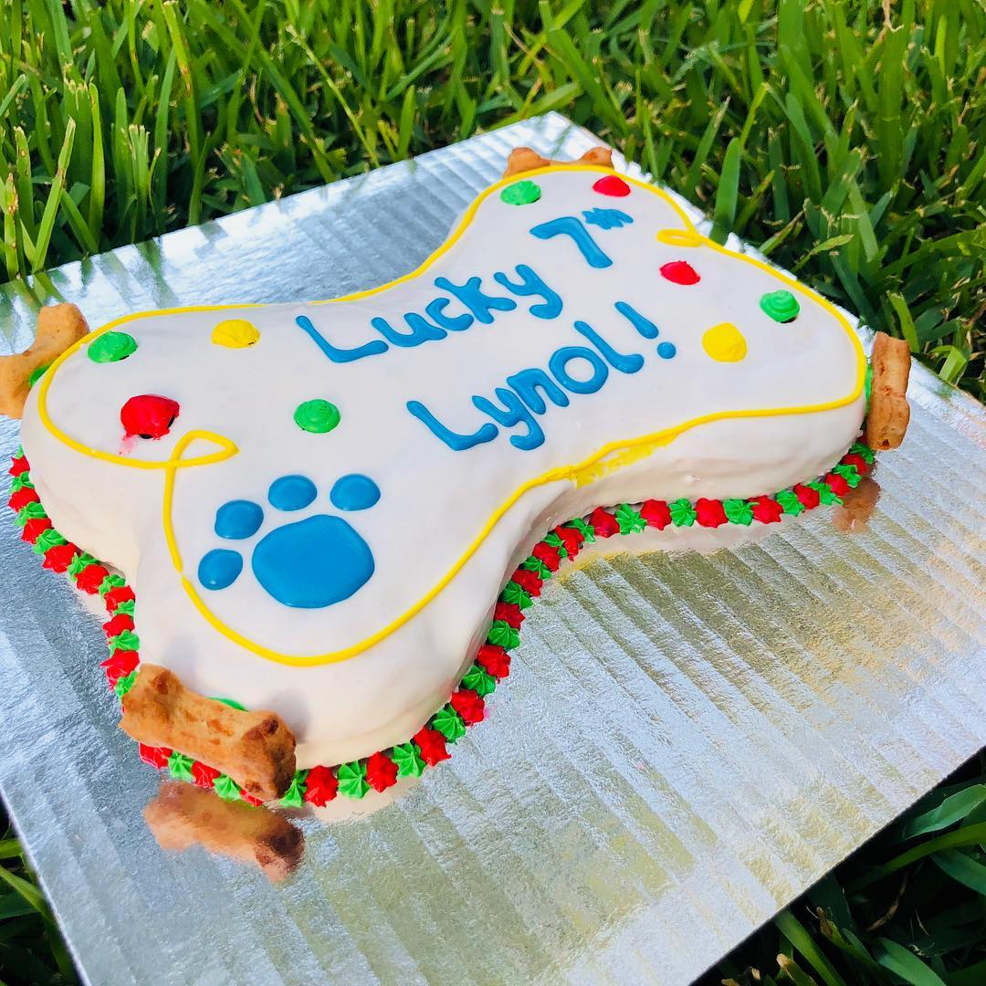 Feeling Lucky | Dog Cake
