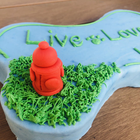 Custom Dog Cake | Dog Treats | Dog Bakery Dallas | Fire Hydrant