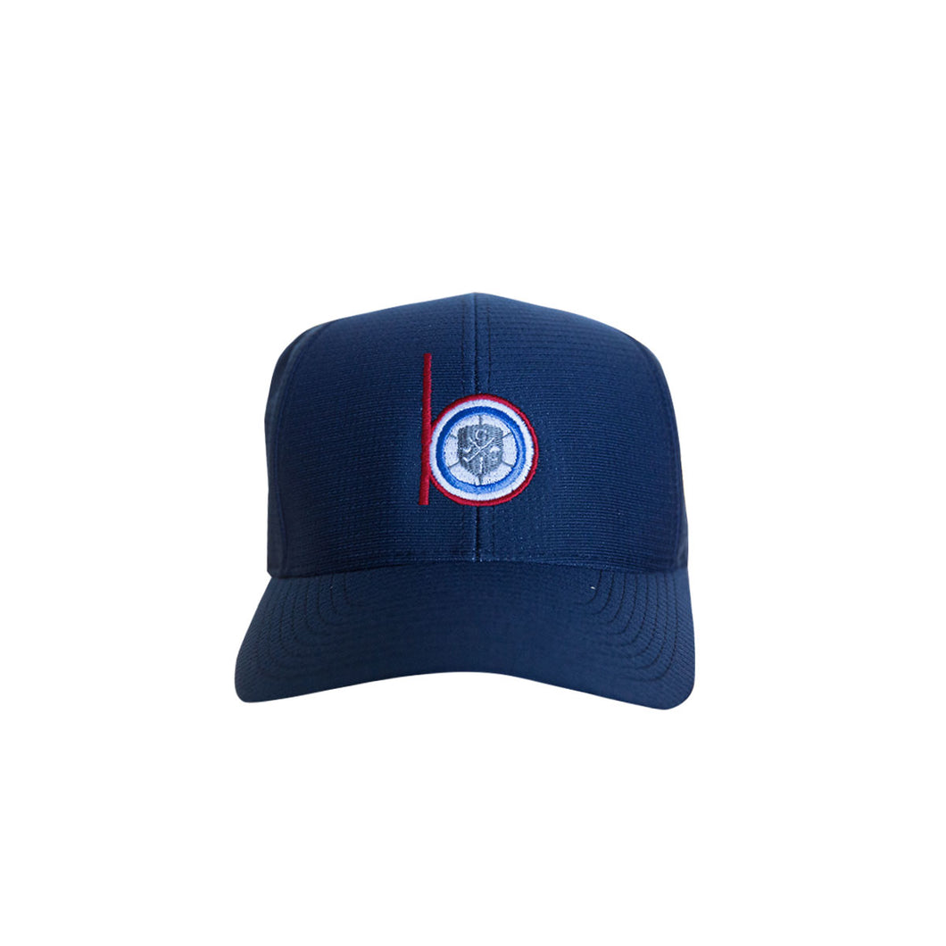 Level Wear Flex Fit hats - Navy
