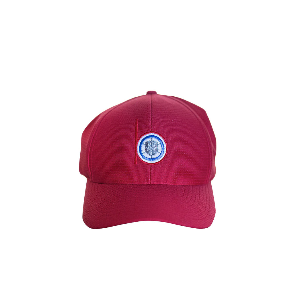 Level Wear Flex Fit hats - Red