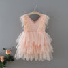 Greta Feather Accent Tulle Dress