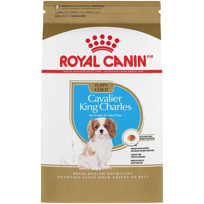 Royal Canin Breed Health Nutrition Cavalier King Charles Spaniel Puppy Recipe Dry Dog Food